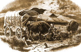 In 1859, more than 100,000 people headed for the hills with Pikes Peak or Bust painted on their wagons.